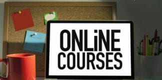 best online courses for political science hons