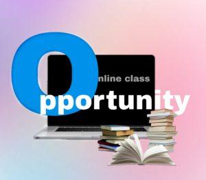 Delhi University online classes